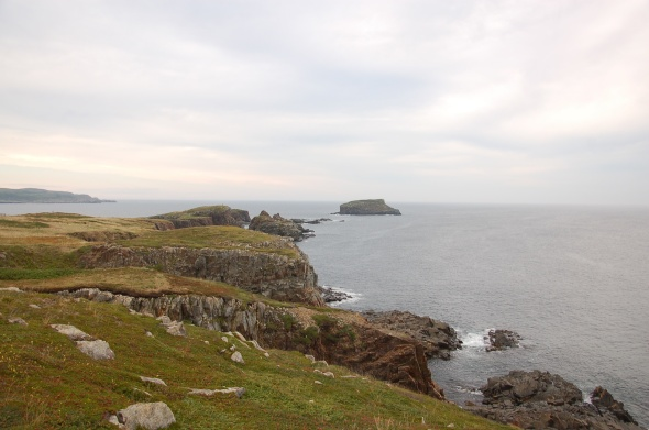 Puffin Point