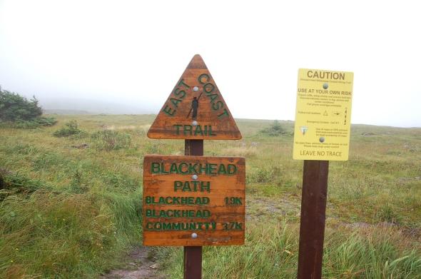 Blackhead Trail